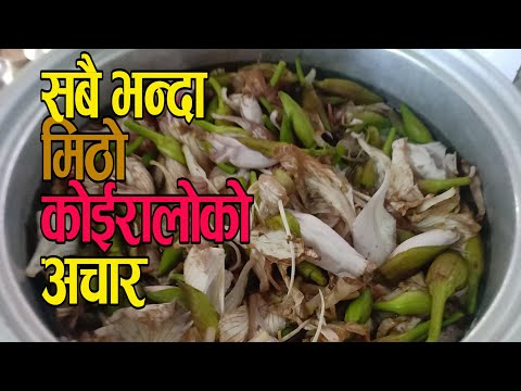 कोईरालोको अचार   Best Nepali Pickle   How To Cook Koiraloko Achar   Koiraloko Achar Banaune Tarika