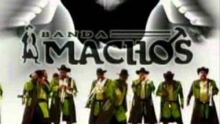 Video Novia Coja--Banda Machos download MP3, 3GP, MP4, WEBM, AVI, FLV Juli 2018