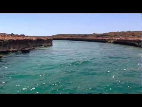 Wild Western Australia Trailer