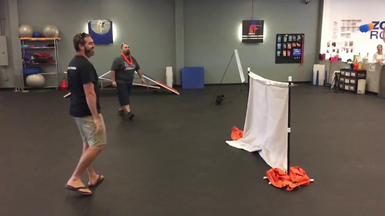 Zoom Room Dog Training - YouTube
