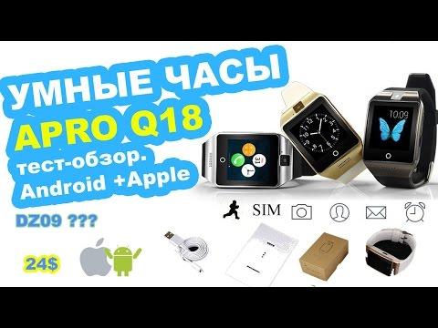 Купить Apple iPhone 5s 16GB golden: цена смартфона Эпл