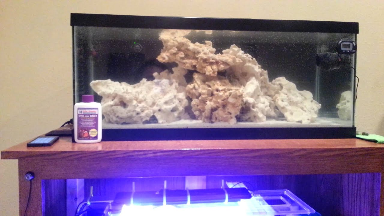 20 gallon long reef tank setup and spev v update youtube for 20 gallon saltwater fish tank