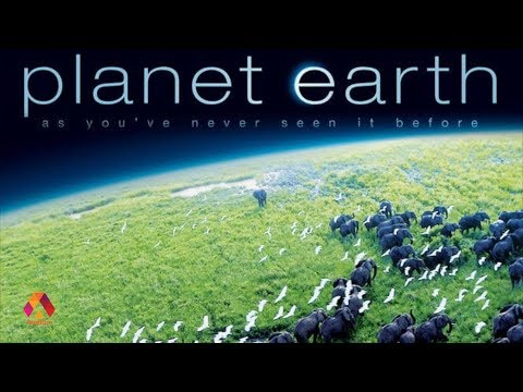 Why We Must Watch Planet Earth  Top 50 Web Series And TV Shows  Episode 02
