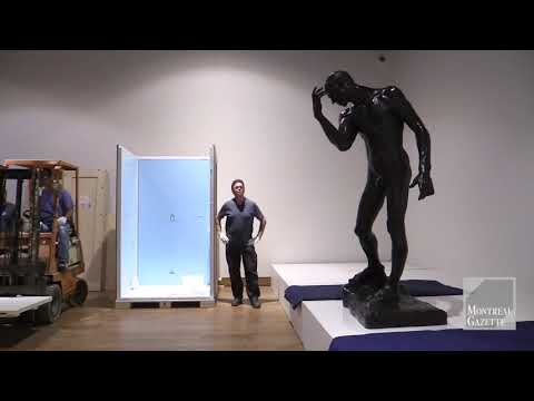 Rodin: Picture Perfect
