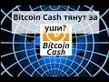 Майнинг дома. Bitcoin Cash тянут за уши?