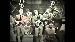 I Fought the Law Bobby Fuller Four HD
