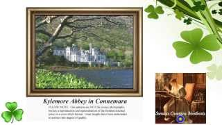 Irish Celtic Counted Cross Stitch Patterns Kits & Downloads