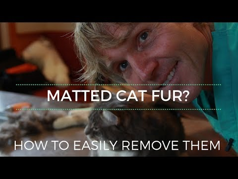 How To Remove Cat Mats!