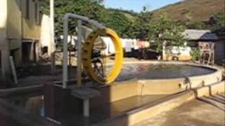 Como instalar uma roda d'água! Laranjal...