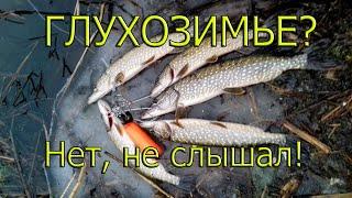 ОТКРЫЛ СЕЗОН СПИННИНГА 2020! ЩУКИ МЕНЯ НЕ ОТПУСКАЮТ-2!/Winter fishing pike/Spinning 2020