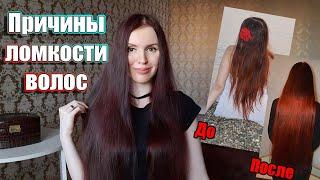 Ломкость волос причины и как ее устранить