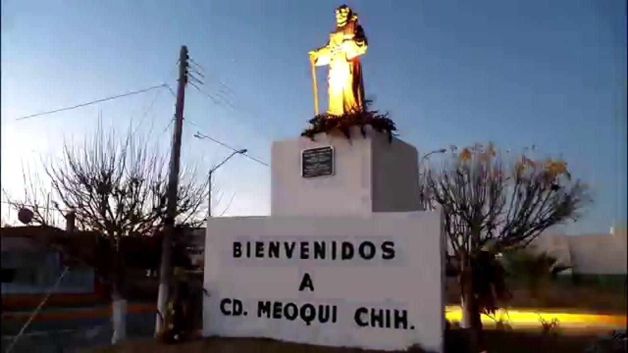 Meoqui chihuahua