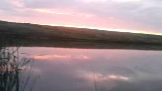 Рыбалка х.Долгий Урюпинский район