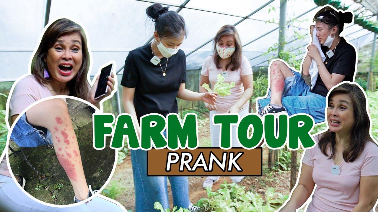 Download Farm Tour Prank by Alex Gonzaga