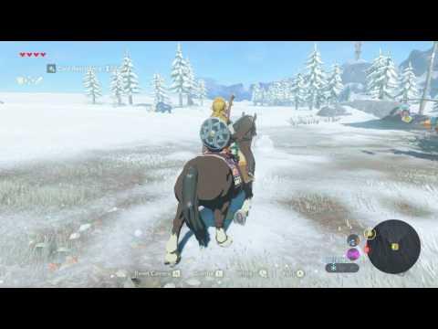 The Legend of Zelda: Breath of the Wild - Captured Memories: Ancient Columns