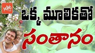 ఒక్క మూలికతో సంతానం - Shatavari For Infertiity Problems - Ayurvedic | YOYO TV thumbnail