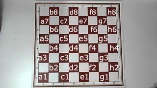 Шашки это интересно. Глава 1. Азбука шашечной игры.