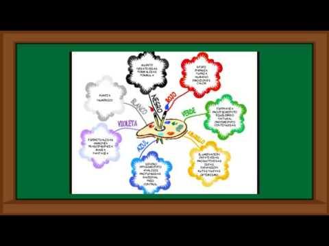 Como Disenar Un Cuadro Sinoptico Un Mapa Conceptual Y Un Mapa