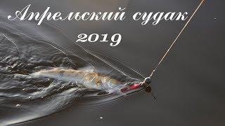 Ловля судака весной на спиннинг. Апрель 2019, Кама: Еду на рыбалку на судака!