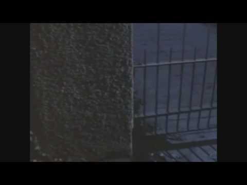 Night of the Creeps 1986 alternate ending