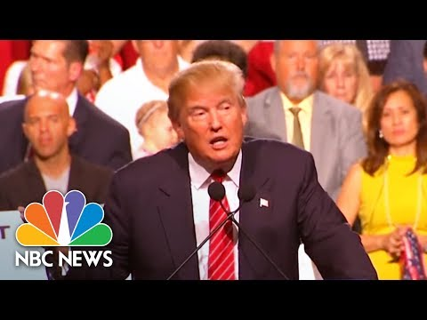 Here's A Breakdown Of Donald Trump's New Immigration Proposal | NBC News