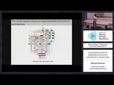 Lecture 1.2: Gabriel Kreiman - Computational Roles of Neural Feedback