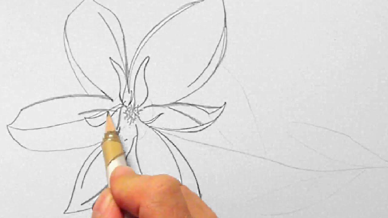 Blume zeichnen im Zeitraffer 01 Flower drawing in fast