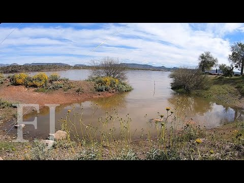 Big Fish In Shallow Flooded Inlet!? (Lake Pleasant From Shore)