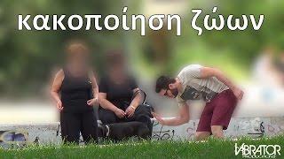 VIBRATOR - κακοποίηση ζώων (social experiment)