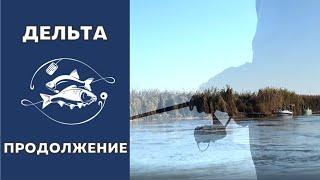 Рыбалка в дельте Волги осенью Часть вторая Красноперка и окунь на спиннинг