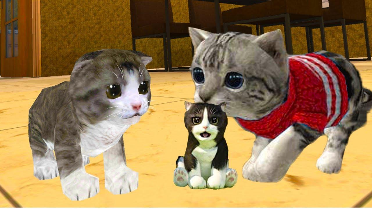 Скачать игру кошки симулятор жизни через торрент