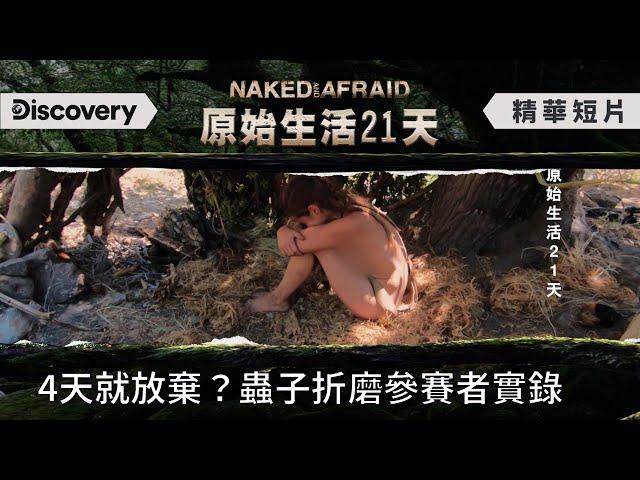 4天就放棄挑戰!蟲子如何折磨一個參賽者的實錄......《原始生活21天》Naked and Afraid