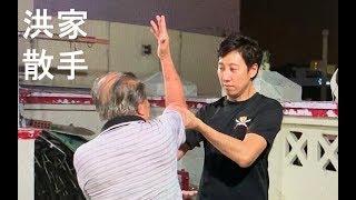 散手训练 - 洪家拳种 (Hung Gar San Sou Training)