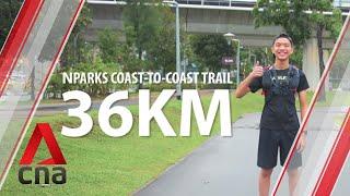 What it's like walking all 36km of Singapore's coast-to-coast trail