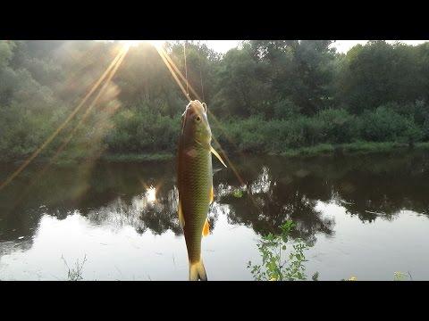 """Поход выходного дня.Рыбалка на """"перетяжку"""".р. Болва."""