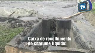 CRIME AMBIENTAL EM RIO DAS OSTRAS