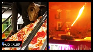 Must-See Chaotic Incidents In NYC