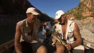 Simon's friend Wally the Baby Crocodile ► All 4 Adventure TV