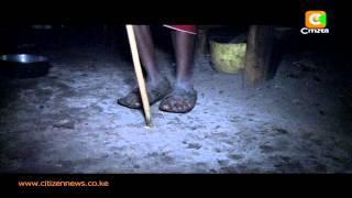 Human Wildlife Conflict In Kajiado