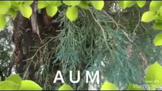 [The Power of AUM/OM (ॐ) and Nitric Oxide]