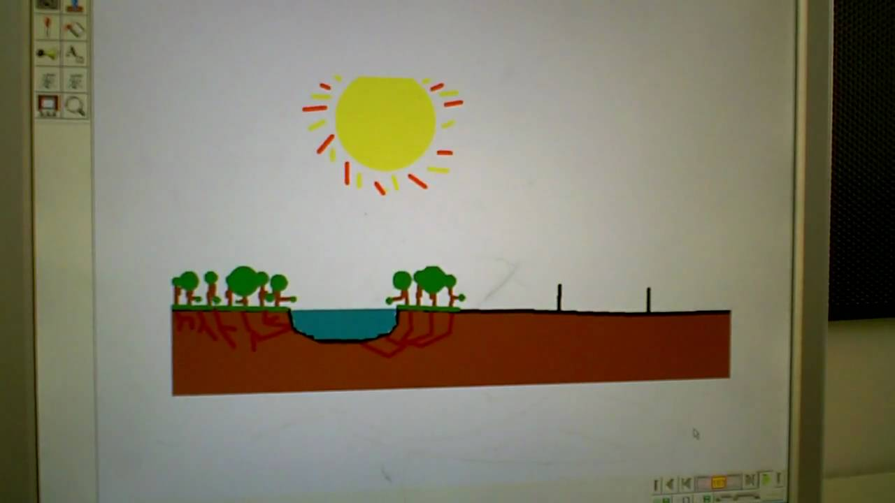 Fotosyntesen i 7.klasse