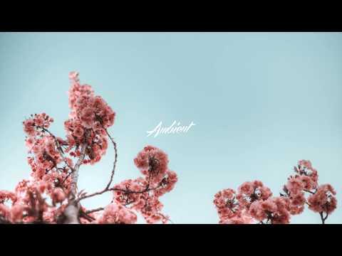 Jameson Nathan Jones - In Measure