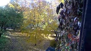 Вильнюс  Осень  24 октября 2015 года