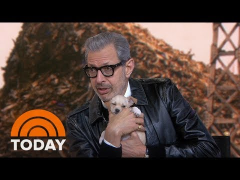 Jeff Goldblum Talks About His New Movie, 'Isle Of Dogs' | TODAY
