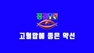 [징검다리TV]약선요리-고혈압에 좋은 약선-곤약, 녹차…