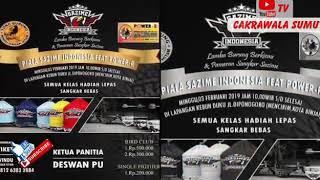Top Hits -  Kapas Tembak Palapa Juara Di Sazime Cup