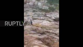 USA: At least 9 dead after flash flood hits swimming hole