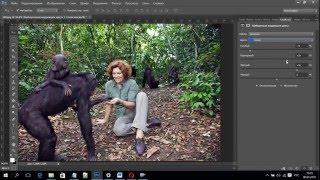 Урок №6 Часть2 Инструмент Выборочная коррекция цвета в фотошопе