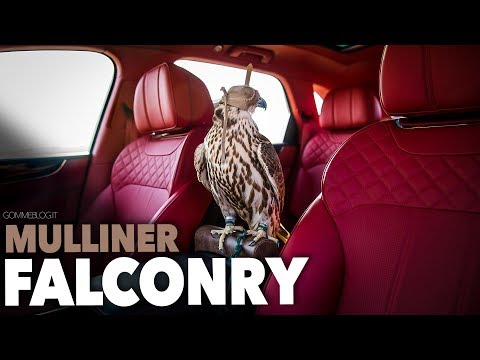 Bentley Bentayga Falconry by Mulliner - TOP 2017 Best Luxury SUV