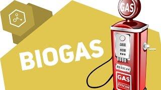 Wie wird Biogas hergestellt?